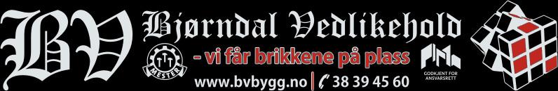 Bjørndal Vedlikehold